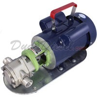 Power WCB30 stainless steel Mini-Gear Pump