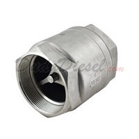 "Vertical Check Valve 4"" WOG1000"